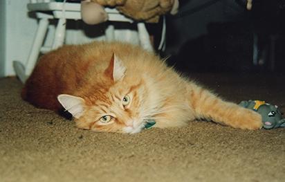 1990-Oskar-pre-eyeloss-w